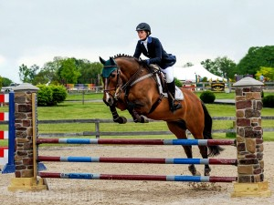 Faux pillars work perfectly for horse jumps.