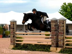 Horse jumps made with faux stone pillars are easier to adjust heights with.