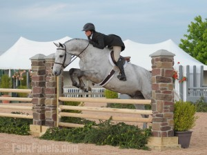The style and grace of show jumping is the perfect setting for our beautifully realistic faux stone columns.