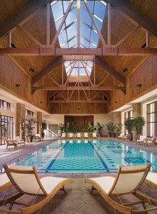 Stunning indoor swimming pool design with ceiling trusses